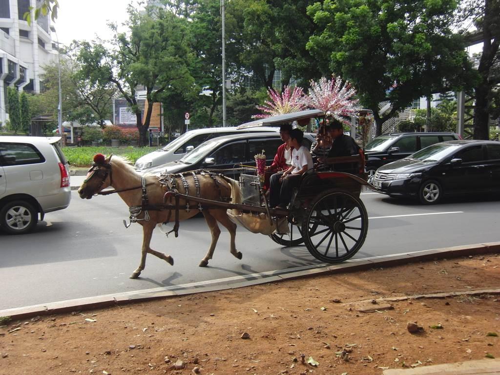 ジャカルタ市内を走っていた馬車