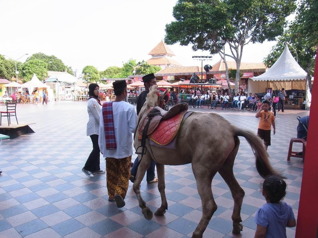 JKT EXPO で馬を引き連れていました