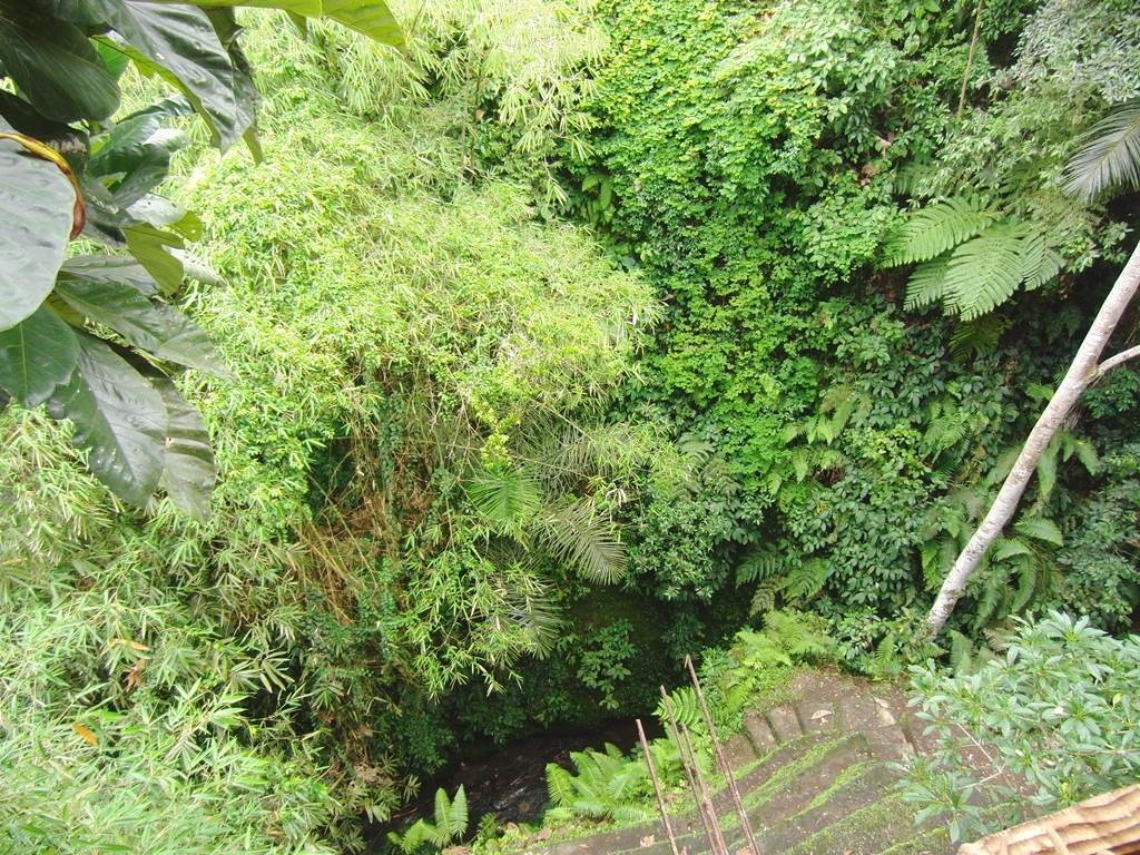 バリ島の木彫り屋さんの裏側が絶壁