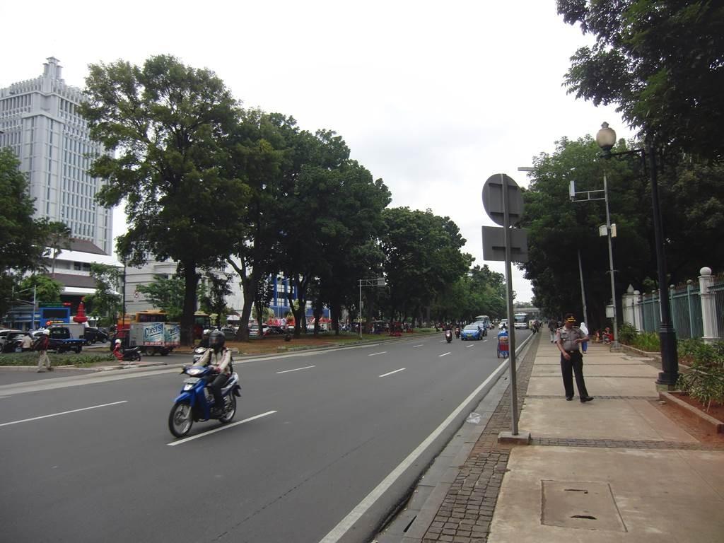 モナス前のバス停の道路