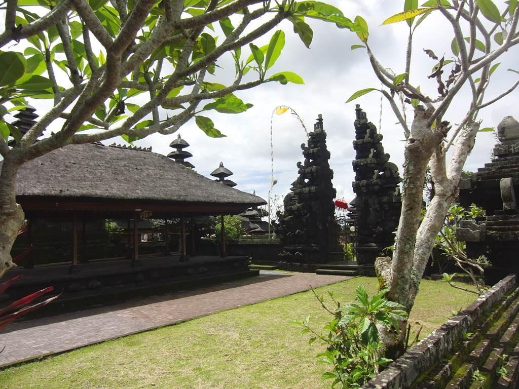 ブサキ寺院の中にジュプンの木があります