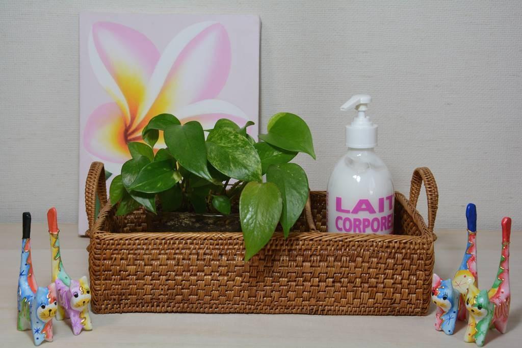 観葉植物とボディークリームを収納する