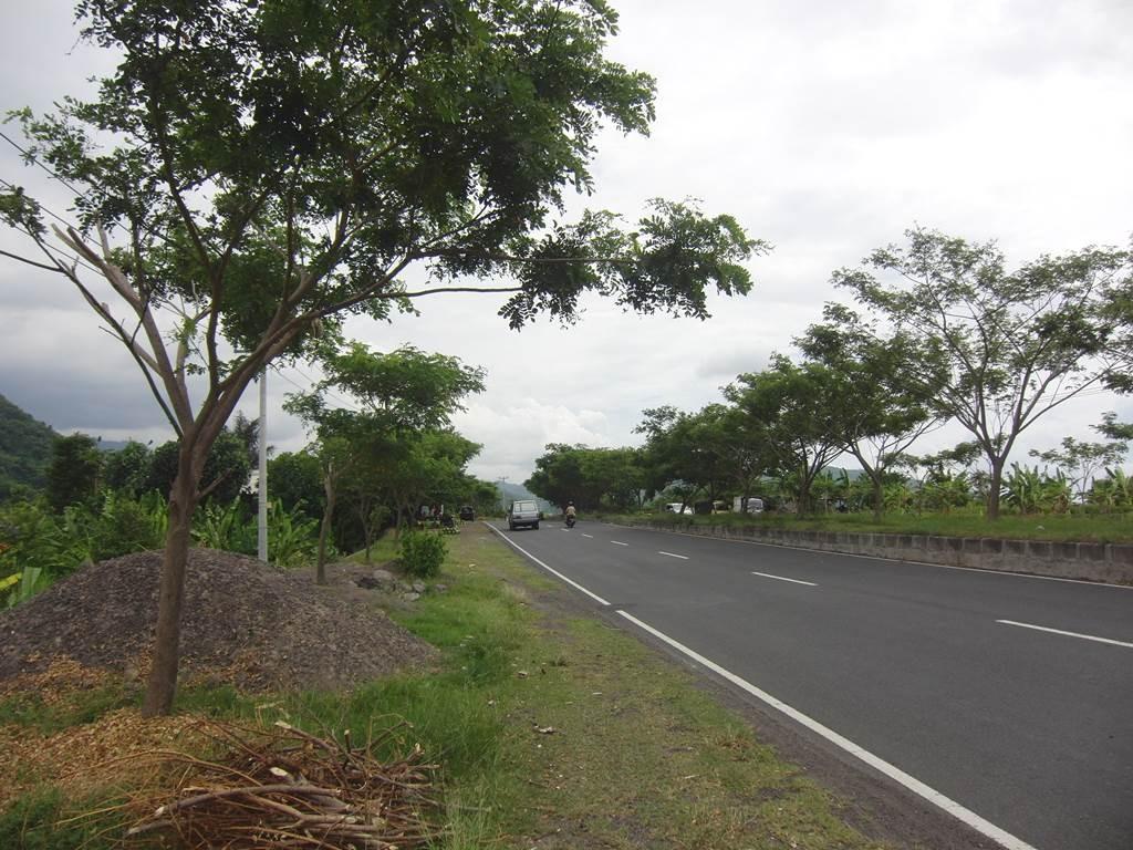 バリ島のカランガッセムまでの景色1