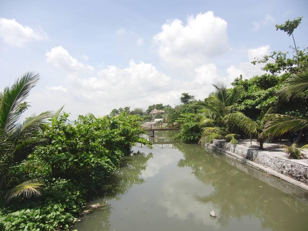 橋から見る川の様子